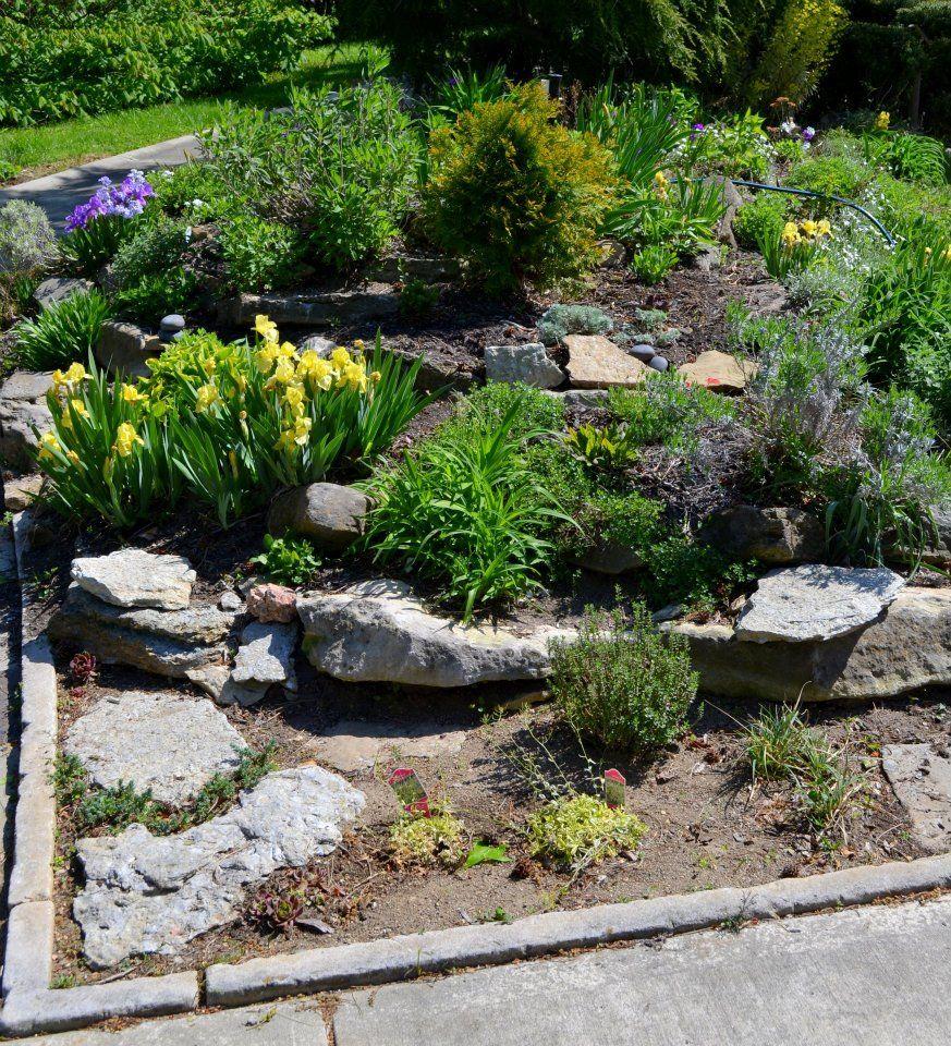 Lovely Designing A Rock Garden Photos   Landscaping Ideas For Backyard    Educard.info