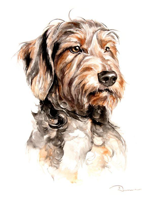 Watercolor Pet Portrait Watercolor Dog Portrait 7 Portraits