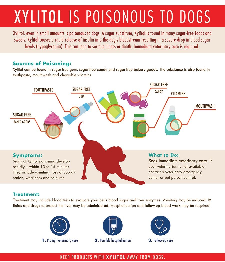 Food That Contain Xylitol Google Search Pet Advice Xylitol Dogs