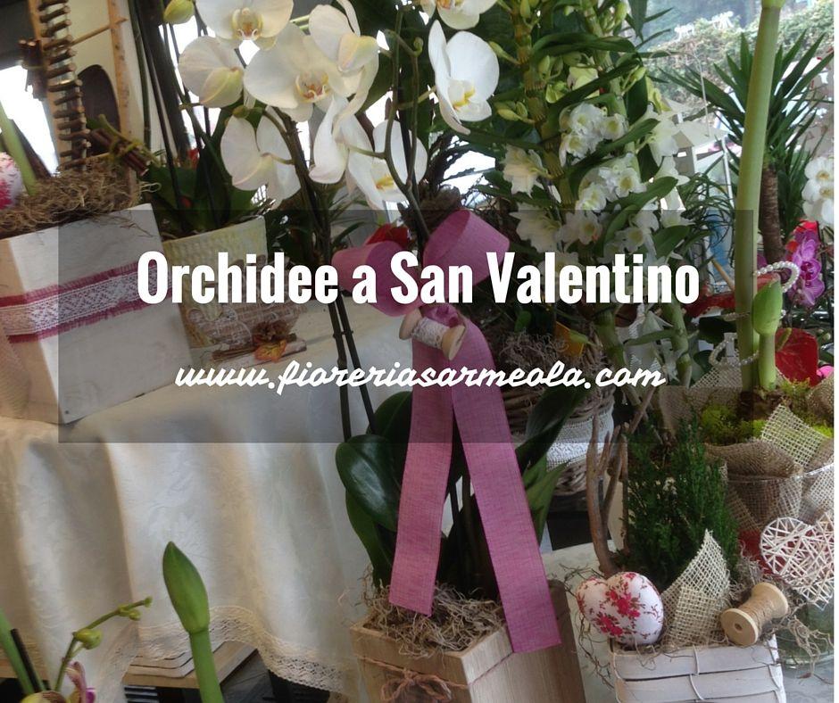 Abbiamo parlato di rose rosse, rose stabilizzate, peluche, centrotavola ed altro ancora ma per San Valentino non abbiamo parlato di regalare delle orchidee