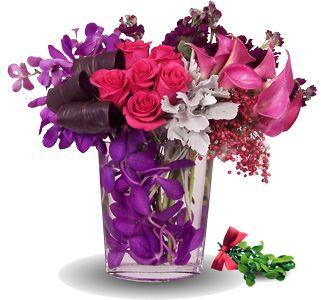 Sugarplum Fairy Flower Delivery Flowers Fast Flowers