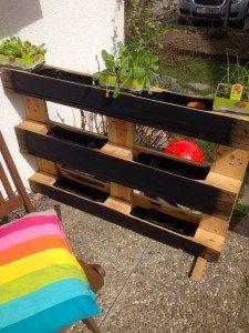 Diy kr uter palette palettenbeet garten ideen garten - Gartengestaltung fur anfanger ...