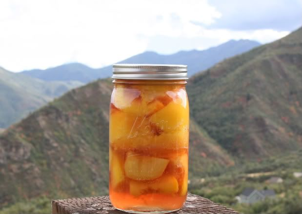 Hobble Creek Kitchen canning peaches