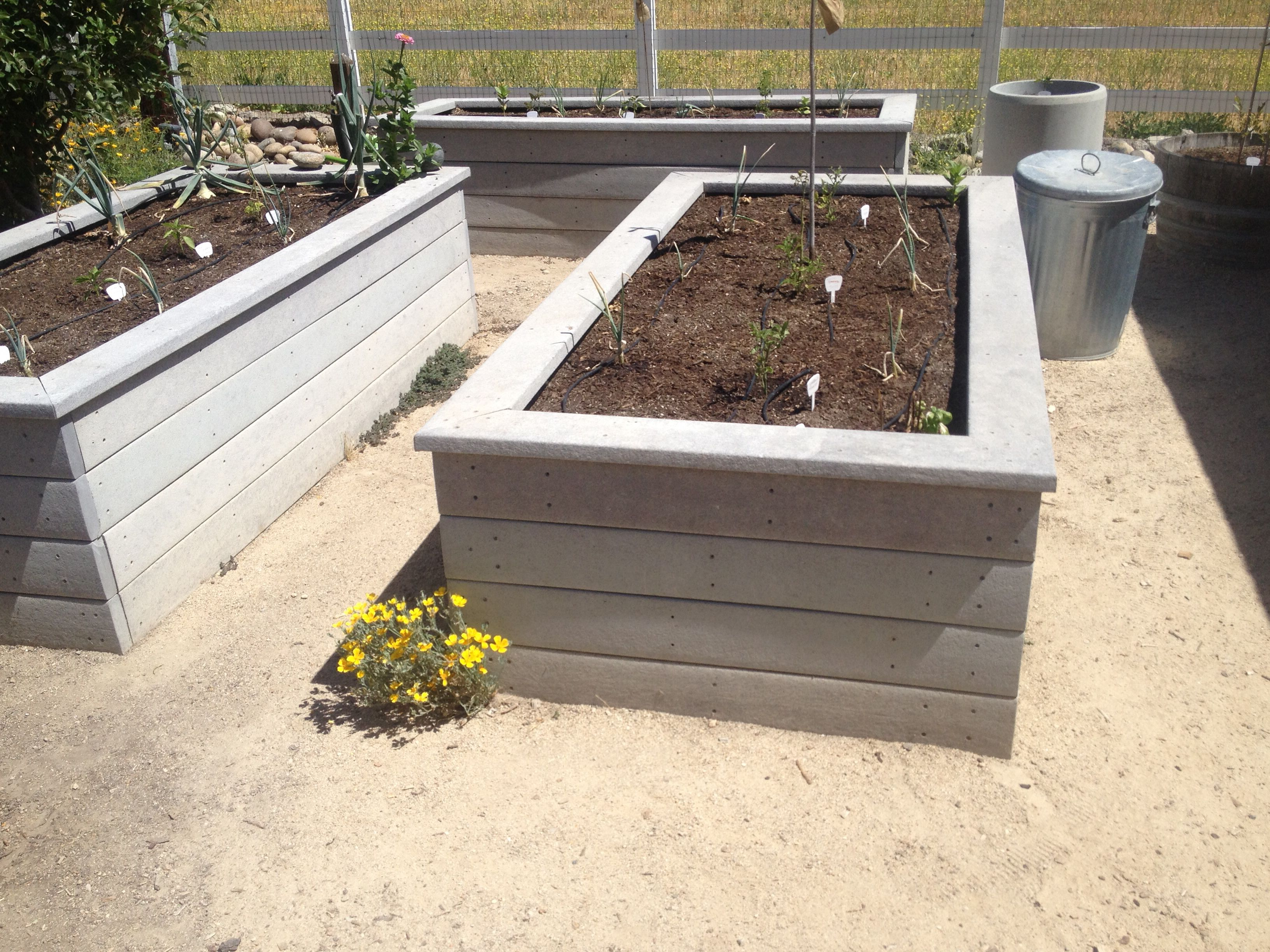 Trek Raised Garden Beds Clean And Wood Won T Rot With