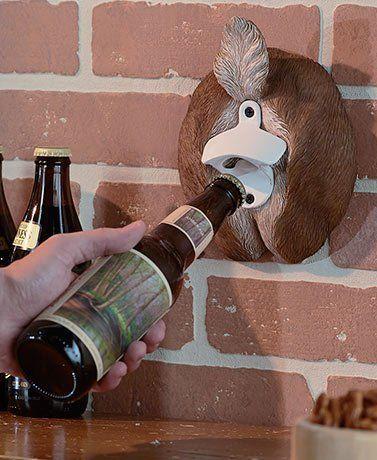 Pop bottle ass hole pics 439