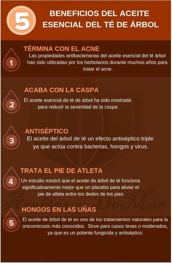 Beneficios Del Aceite Esencial Del árbol De Te Guía De Aceites Esenciales Aceite Aceite Arbol De Te