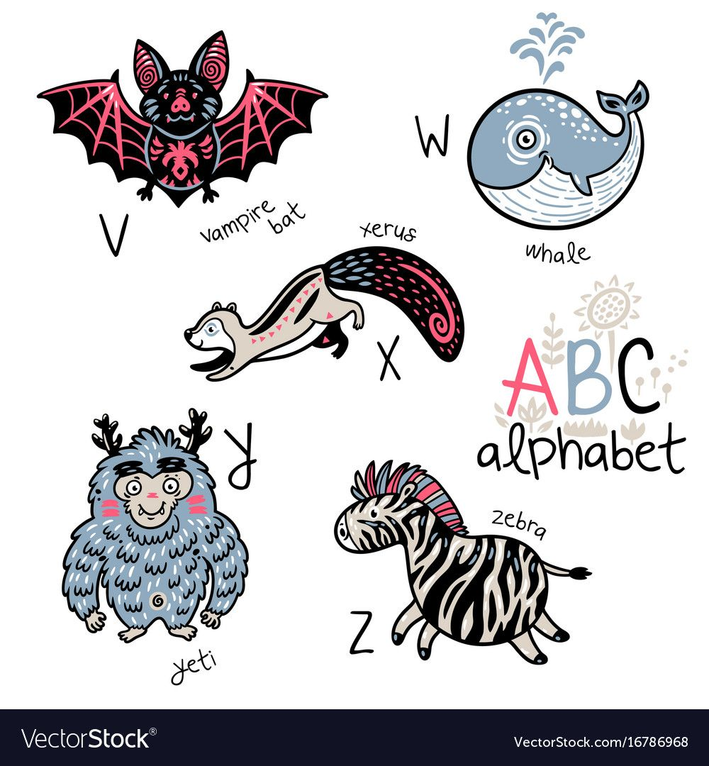 Animals Alphabet V Z For Children Vector Image On Vectorstock