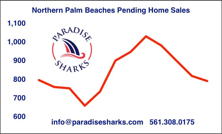 Itu0027s September 1st and that means Paradise Sharks will be - real estate market analysis