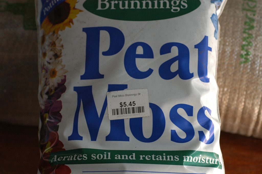 Peat moss first became available to gardeners in the mid1900s and since then it has revolutionized the way we grow plants. Read this article to learn more about peat moss uses.