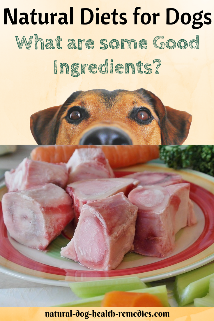 What Makes A Natural Healthy And Good Quality Dog Diet Find Out Here Doghealth Dogcare Dogfood Natural Diet Dog Food Recipes All Natural Dog Food