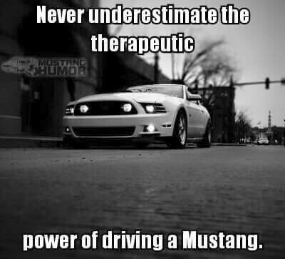 Truth With Images Mustang Quotes Mustang Girl Mustang Humor