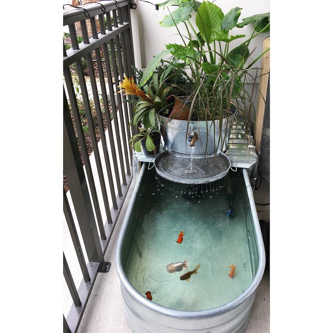 Making The Most Of A Small Patio Tub Pond Water Garden With