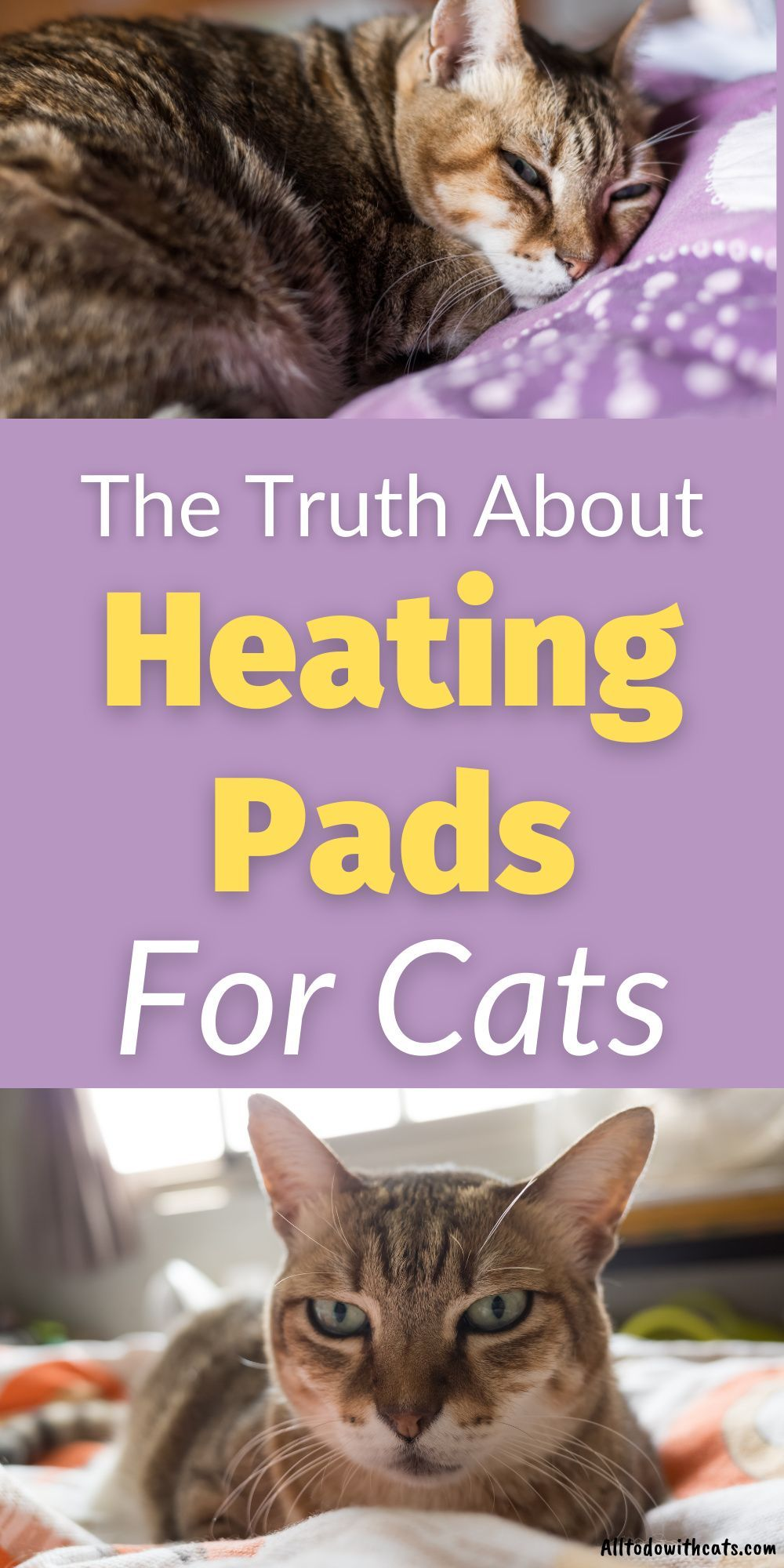 What Are The Best Heating Pads For Cats And Are They Safe Pet Heating Pad Faux Fur Pet Bed Cat Merchandise
