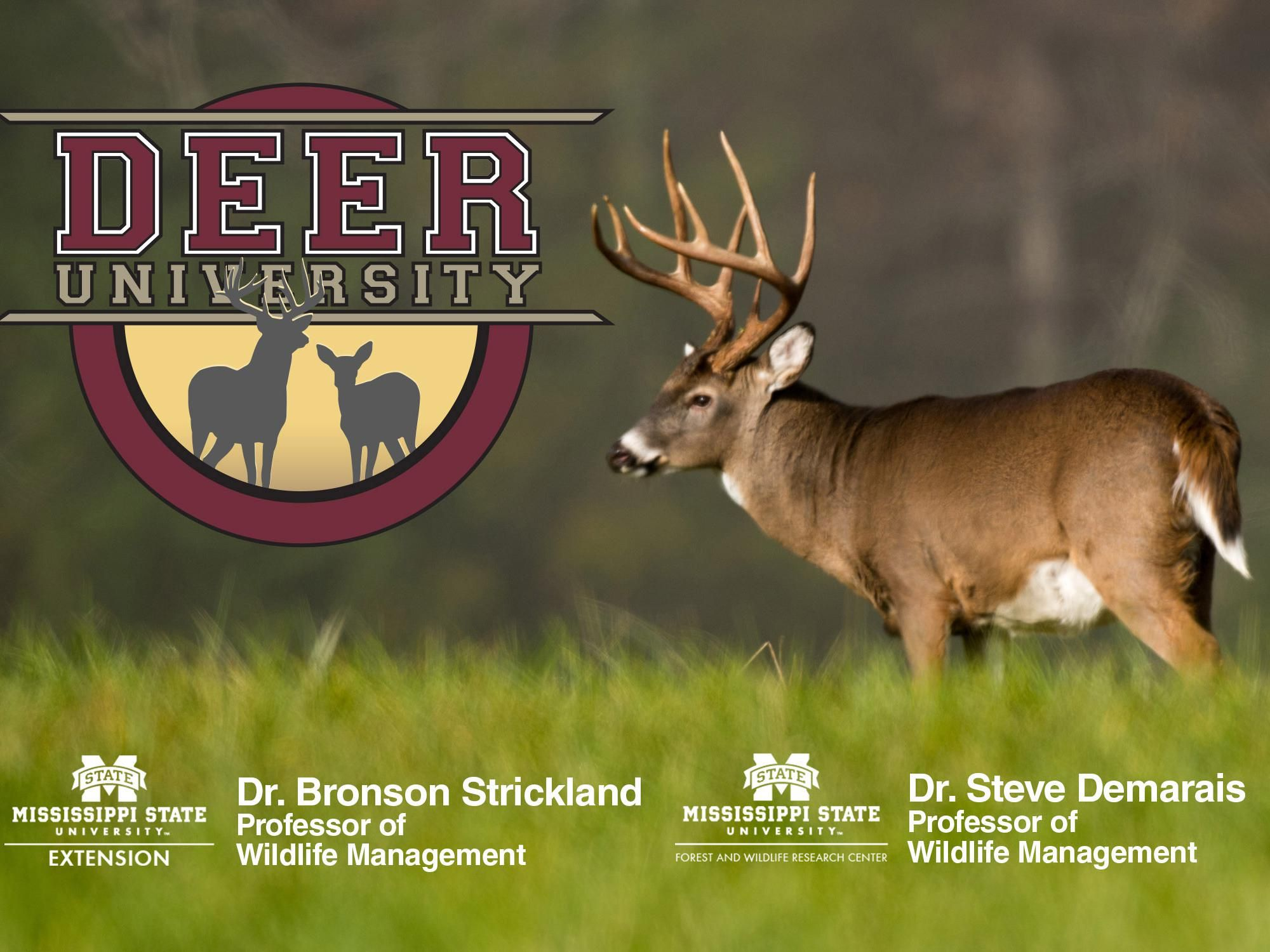 Extension launches deer biology podcast