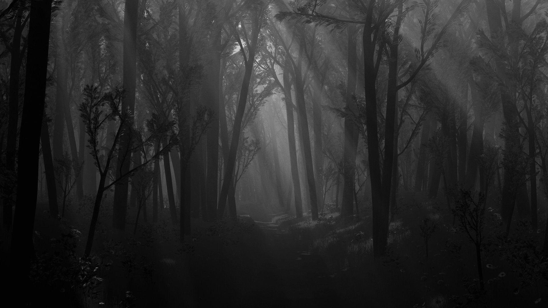 8bff0333e904c8e72e74a12786830897 - 6 Hutan Mengerikan Yang Mempunyai Sebuah Kisah Mistis