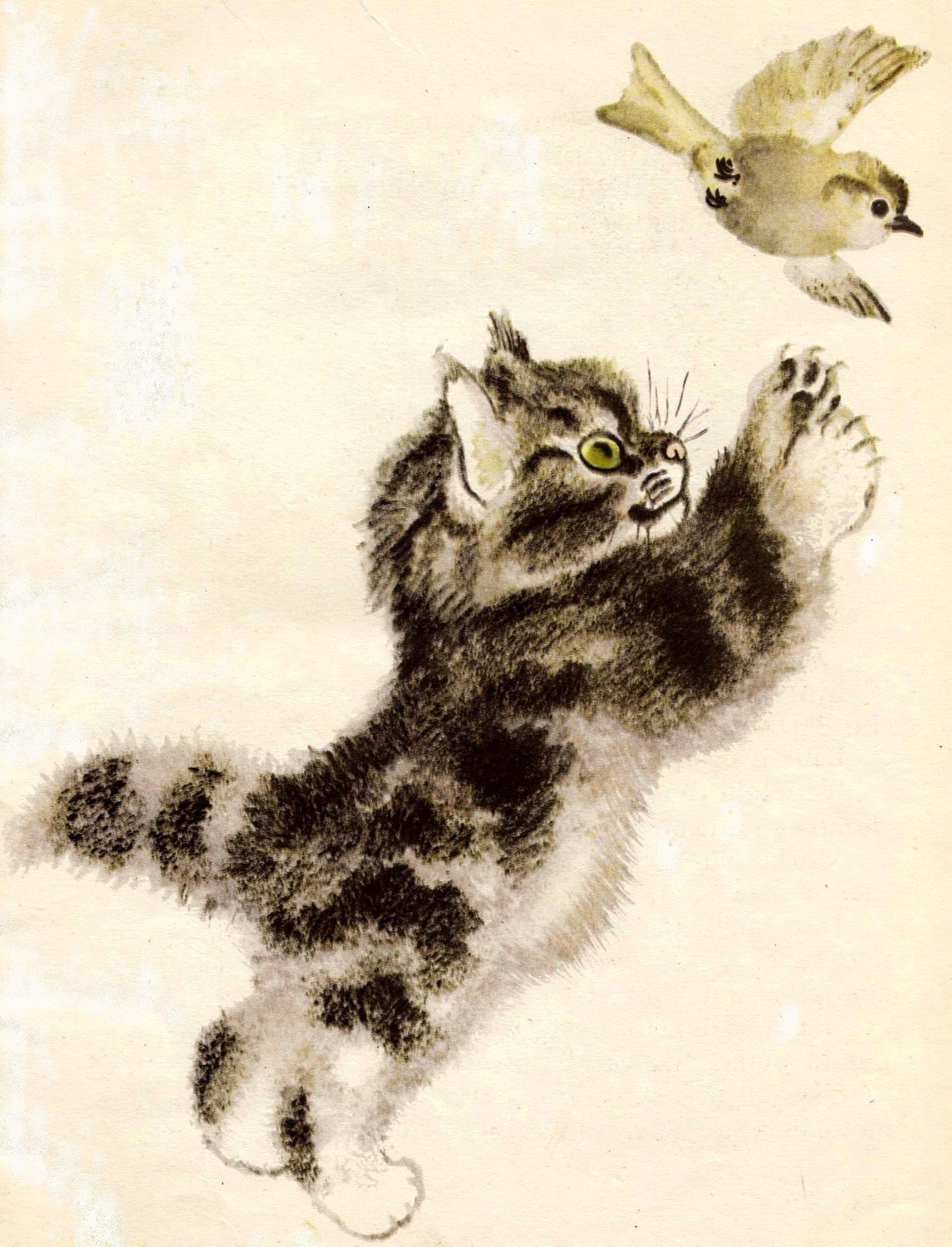 евгений чарушин рисунки животных взял марка рычаги