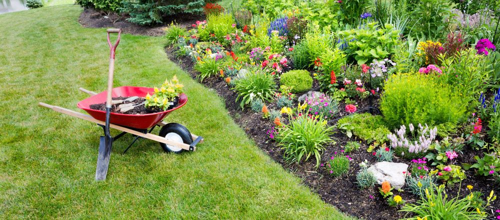 Premium and reliable Garden Maintenance in Gloucester - Fiolation ...