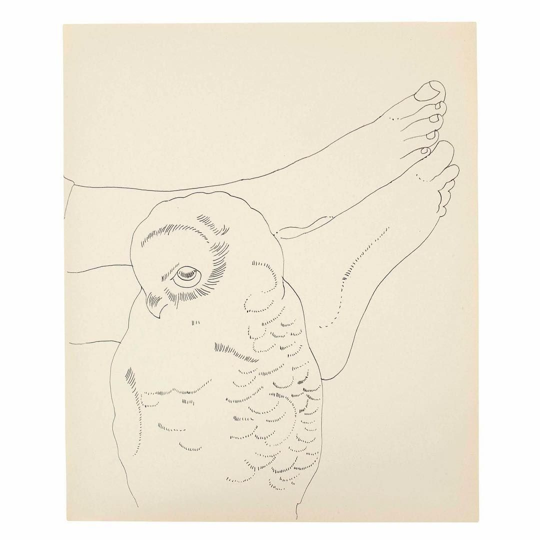 Cupofmeat On Instagram Owl And Feet Andy Warhol Ca