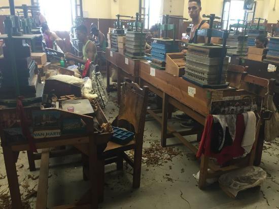 Partagas Cigar Factory La Havane Visite