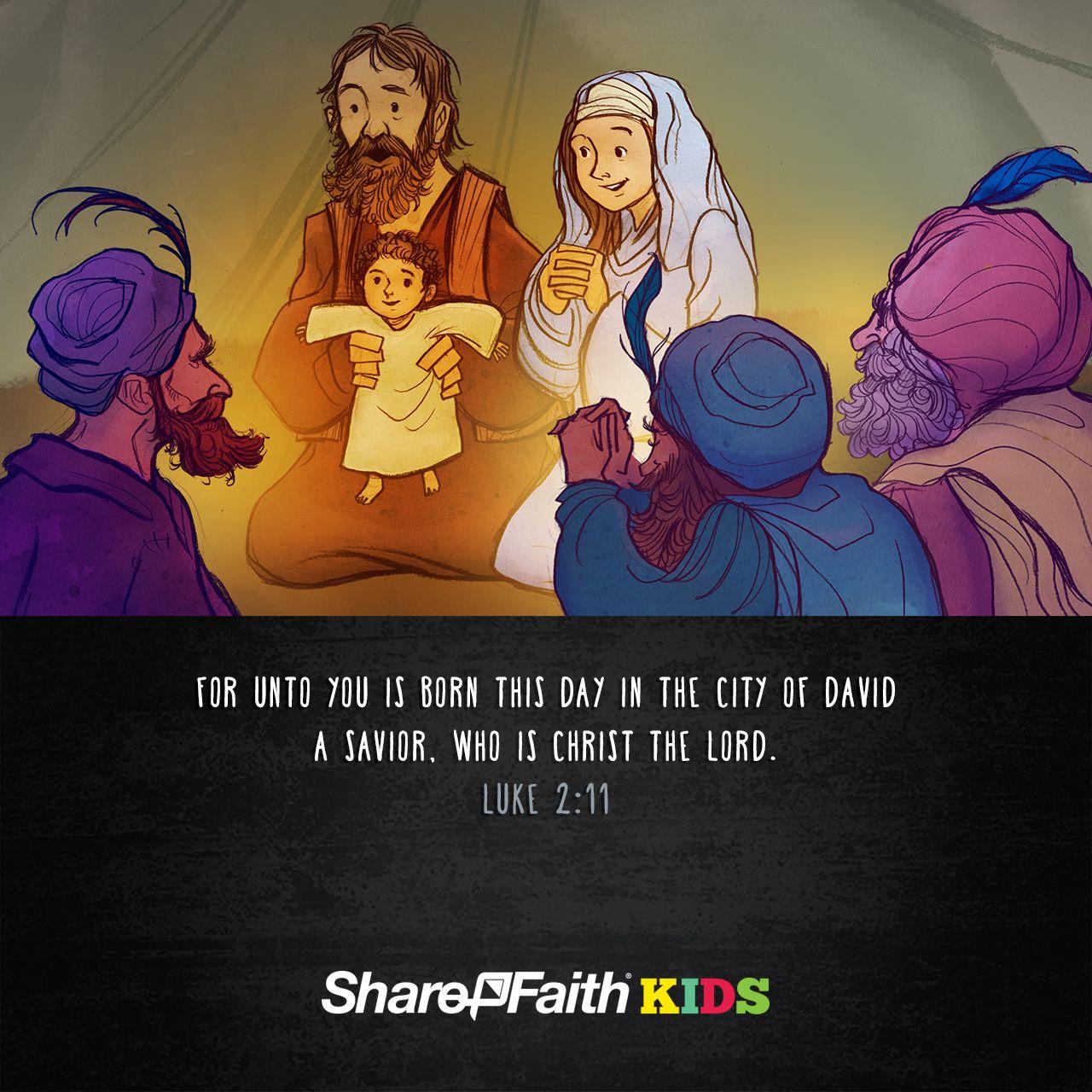 Matthew 12 & Luke 12 The Birth of Jesus Kids Bible