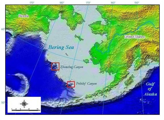 A Map Of The Bering Sea And It S Main Canyons Bering Sea