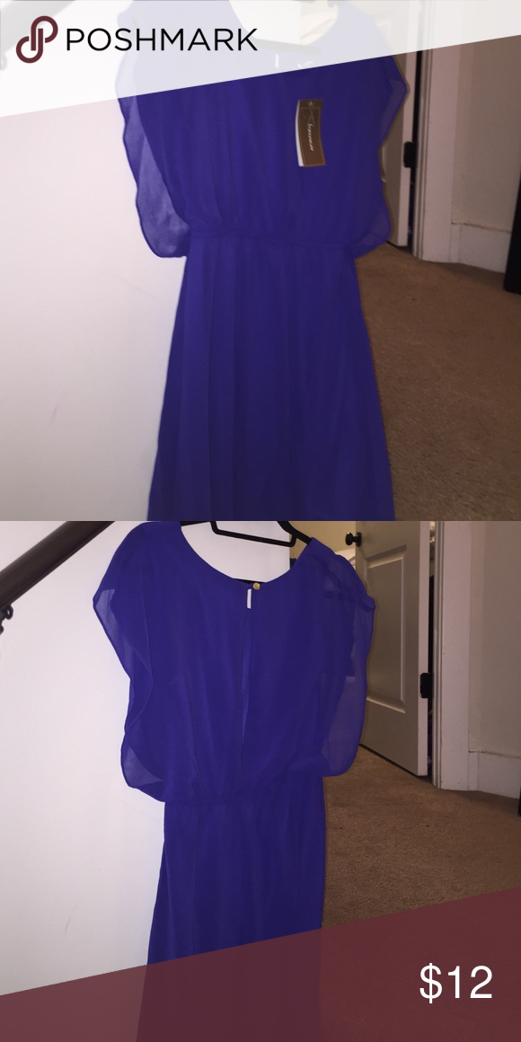 "Francesca's blue dress (NWT)--royal blue chiffon dress with silk slip. Size: Small. Lies 3"" above the knee for someone who is around 5'8"" Francesca's Collections Dresses Midi"