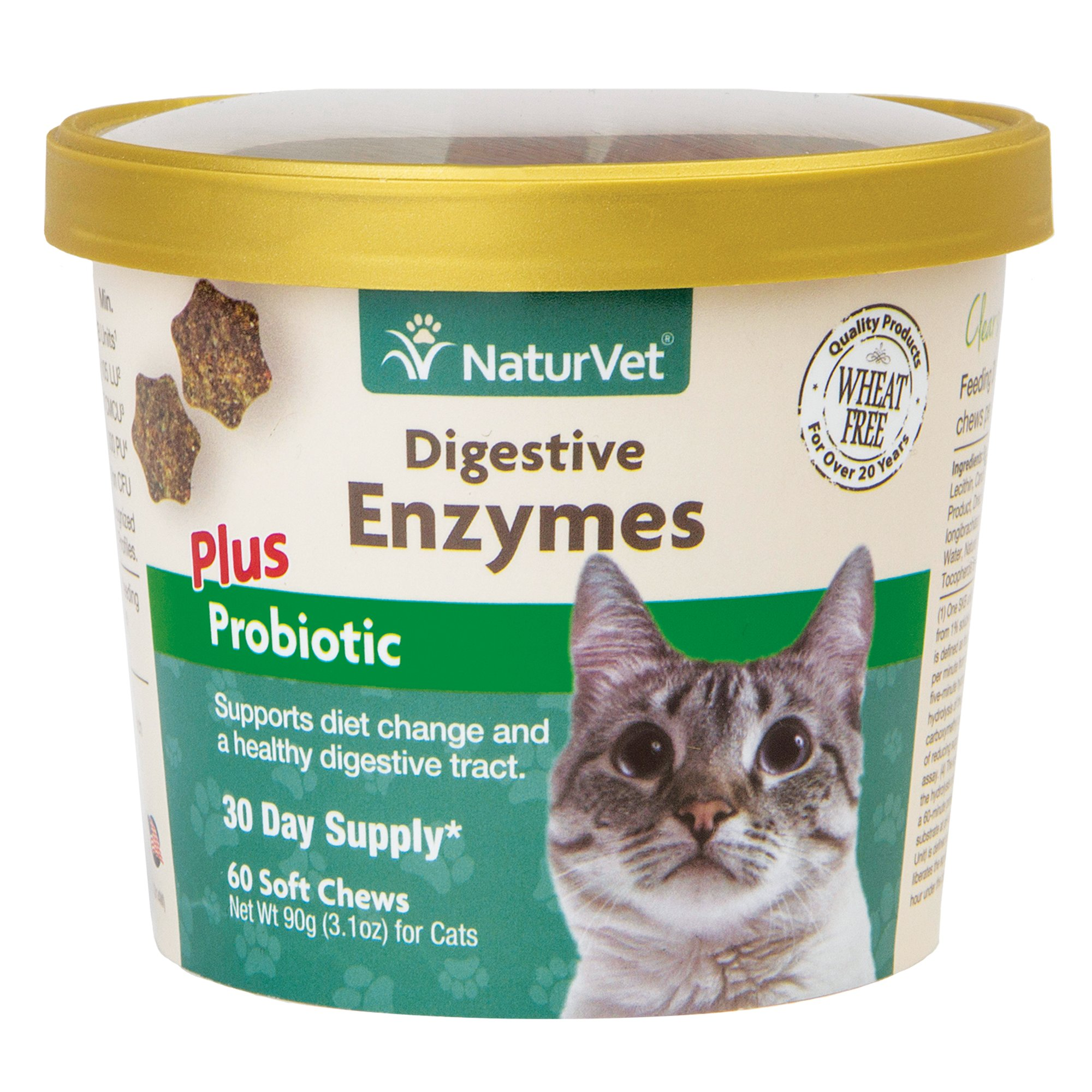 Pin On Cat Nutrition
