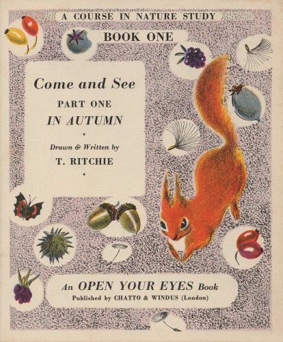 Ladybird In Context Children S Book Illustration Book Art Book Illustration