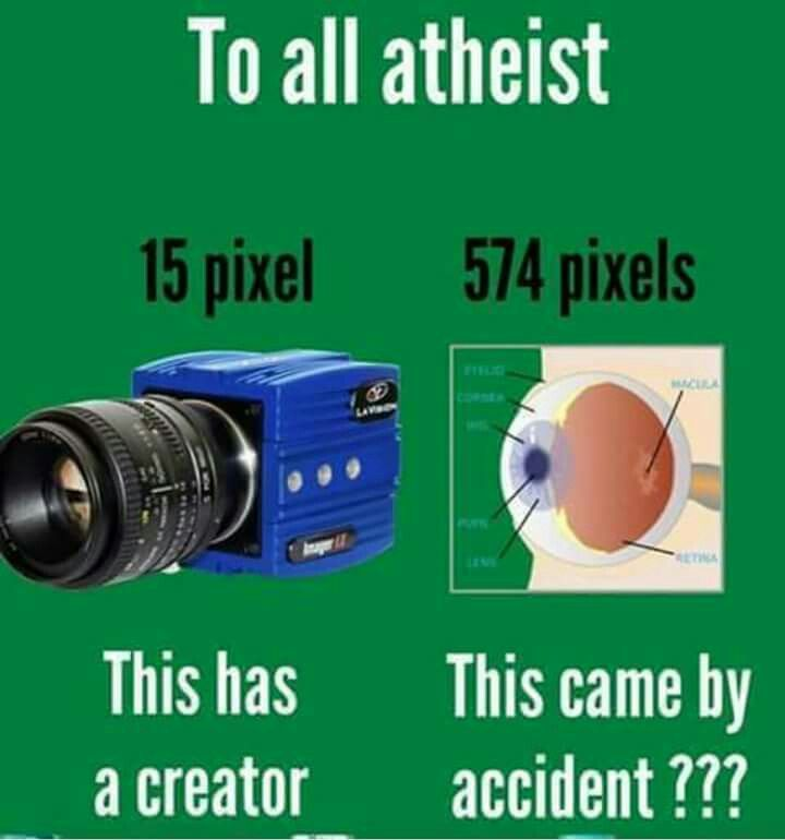 images about Atheism And Evolution Are False  The Word of     Pinterest       images about Atheism And Evolution Are False  The Word of God Is Truth  on Pinterest   God  Penn jillette and Dean jones