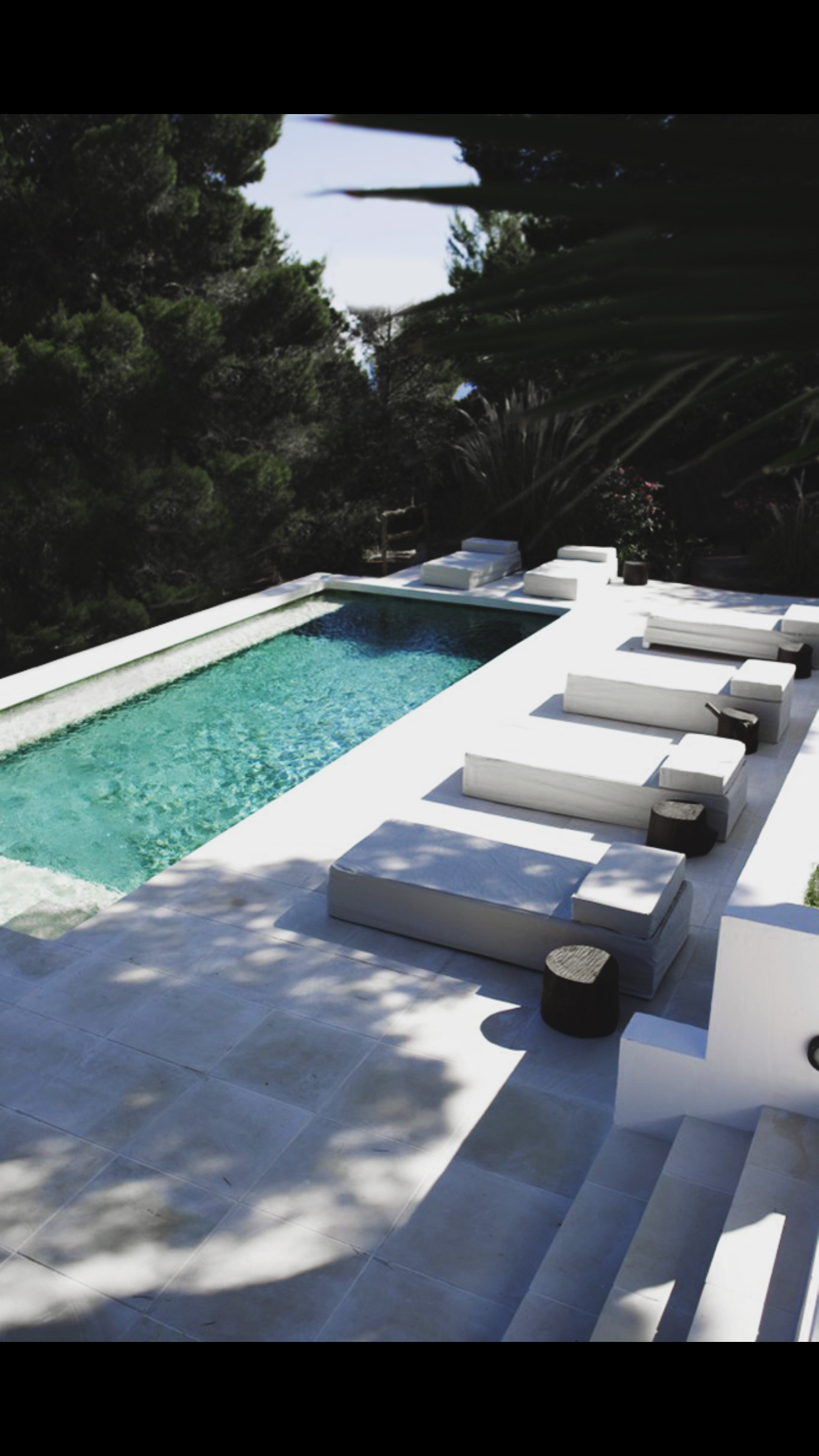 Pin by Richard Juenger on Pools in 2019 | Pool landscaping ...