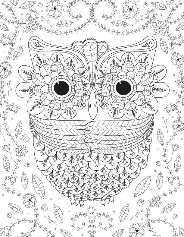 Big Eyed Owl Adult Coloring Page | Adult coloring and Owl