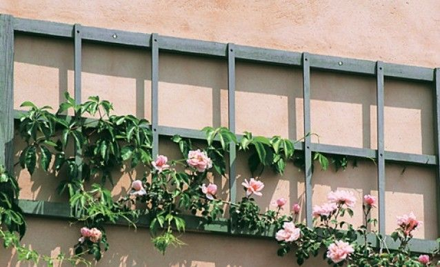 construire un treillis pour le jardin garden terrarium. Black Bedroom Furniture Sets. Home Design Ideas