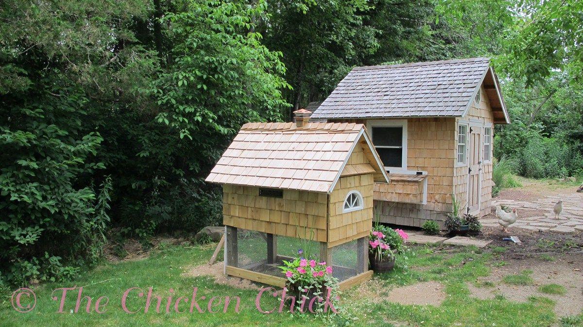 building our quail coop mini me building and quails