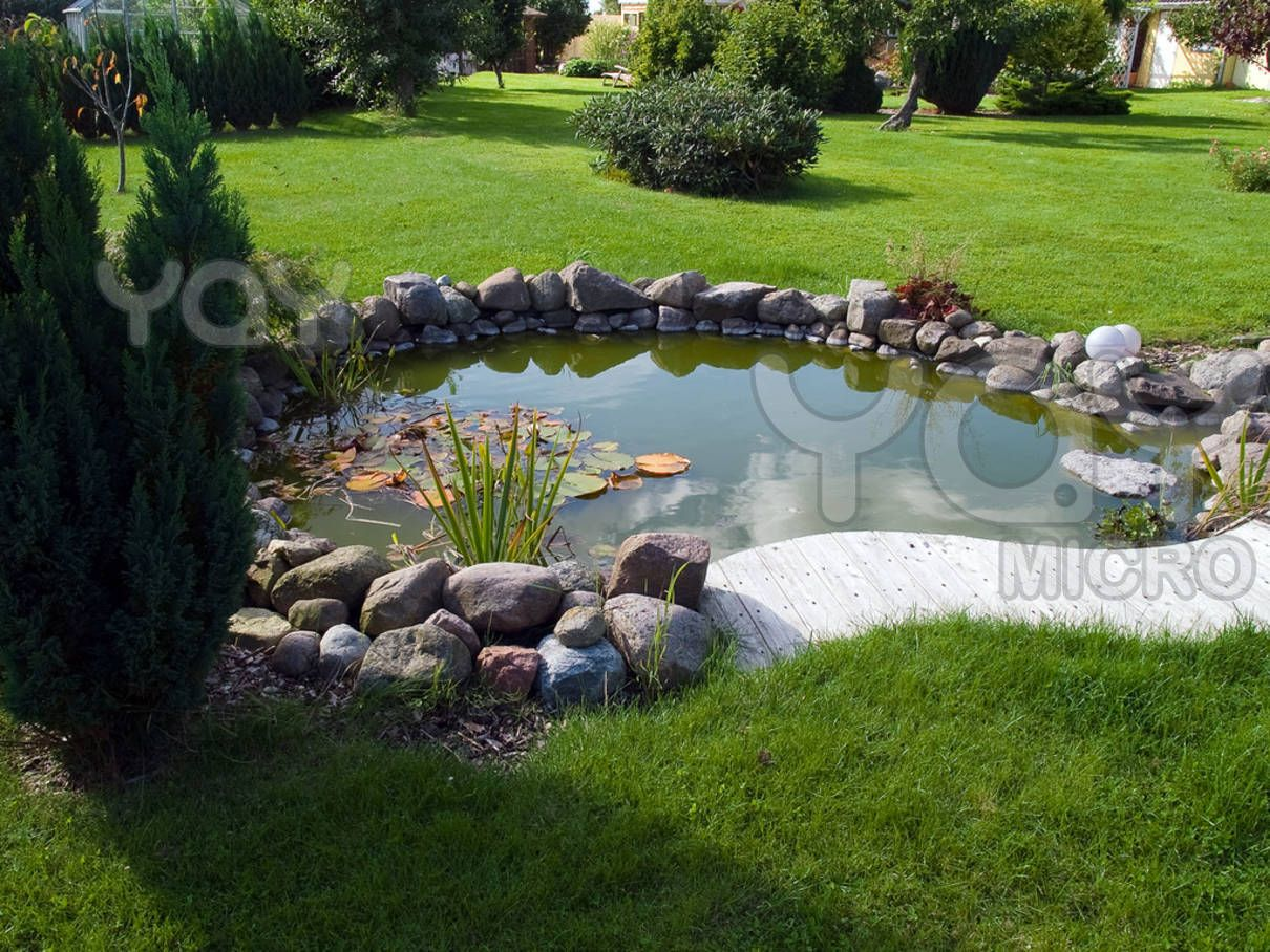 Fish pond landscape every farm needs a pond for fish for Landscaping around koi pond
