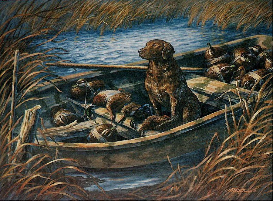 Chesapeake Bay Retriever Hunting Hunting Painting Chesapeake