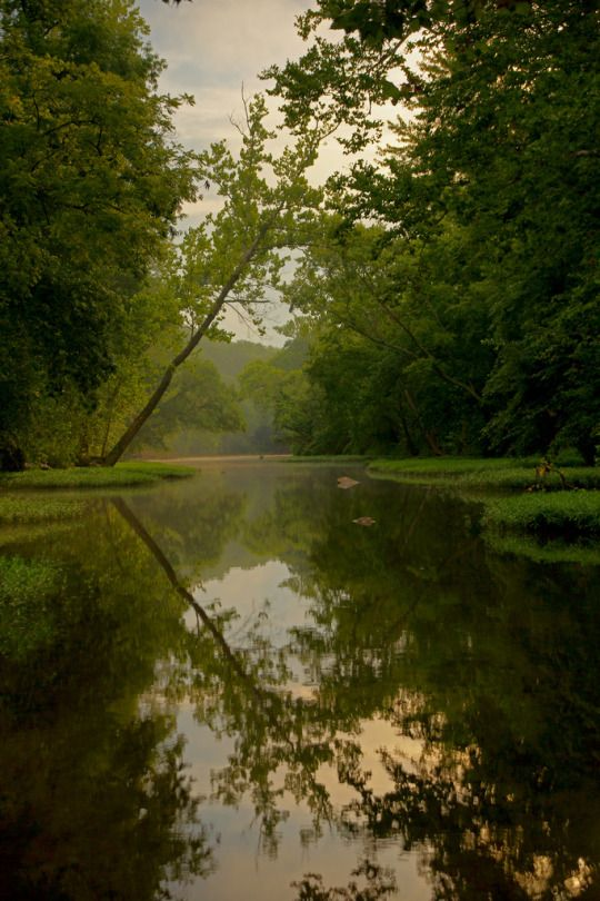 This Is A Nature Blog Nature Nature Scenes Natural Scenery