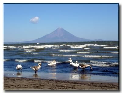 Vista Del Volcán Concepción Desde El Lago De Nicaragua Nicaragua Tourism Lake Nicaragua Places To Travel
