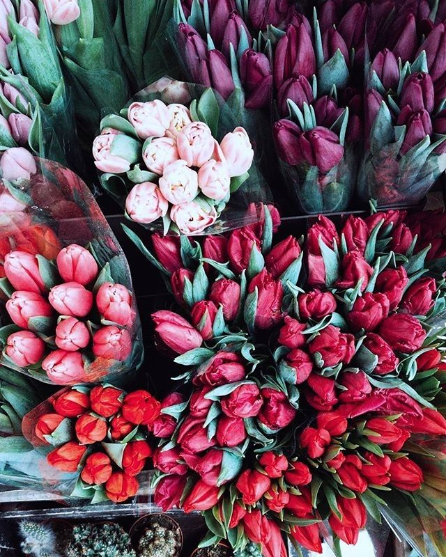 Happy Valentine's Day Sloanies! We have some last minute Galentine's Day ideas on the blog today!  : @margarita_karenko . . . . . #prettycitylondon #livethelittlethings #lifeisbeautiful #lifeisgood #myeverydaymagic #Springmood #verytandc #flowerstagram #theartofslowliving #florist #inspiredbypetals #flowersofinstagram #justbefloral #floralstories #elledecor #topeuropephoto #tulips #makeyousmile #lovelife #living_europe  #flowermagic #worldinbloom #iloveflowers #sloaneranger #sloanestyle…
