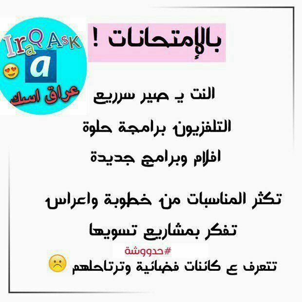 ١٠٠ صح Wisdom Quotes Life Funny Arabic Quotes Arabic Funny