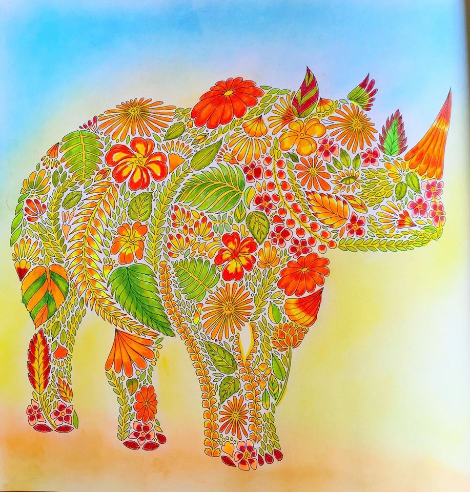Coloured By Julia Mary Hill Cheerful Rhino From Animal Kingdom