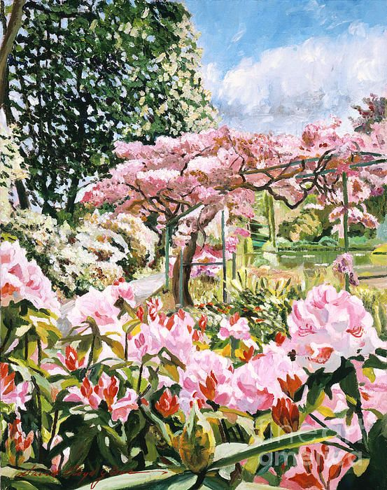 David Lloyd Glover - Giverny Rhododendrons, oil on canvas painting of  Claude Monet's garden