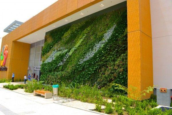 Como revestir um muro com plantas decora con plantas for Muros de plantas verticales