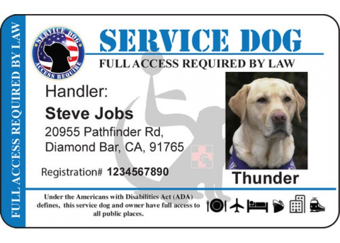 Service Dog Certificate Template 2 Templates Example Templates Example In 2020 Service Dogs Dog Cards Dogs