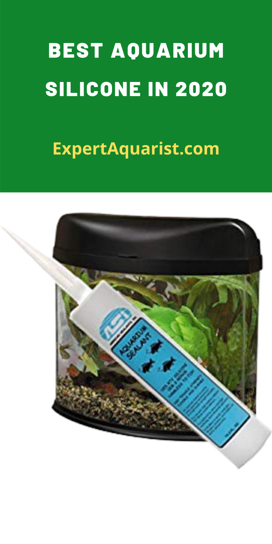 5 Best Aquarium Silicones In 2020 Safest Strongest In 2020 Aquarium Silicone Aquarium Aquarium Maintenance
