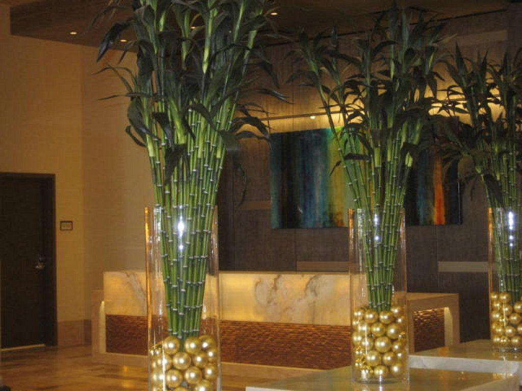 Caas De Bambu Decoracion Exterior Perfect Quien Salon Verde With  ~ Cañas De Bambu Verdes Para Decorar