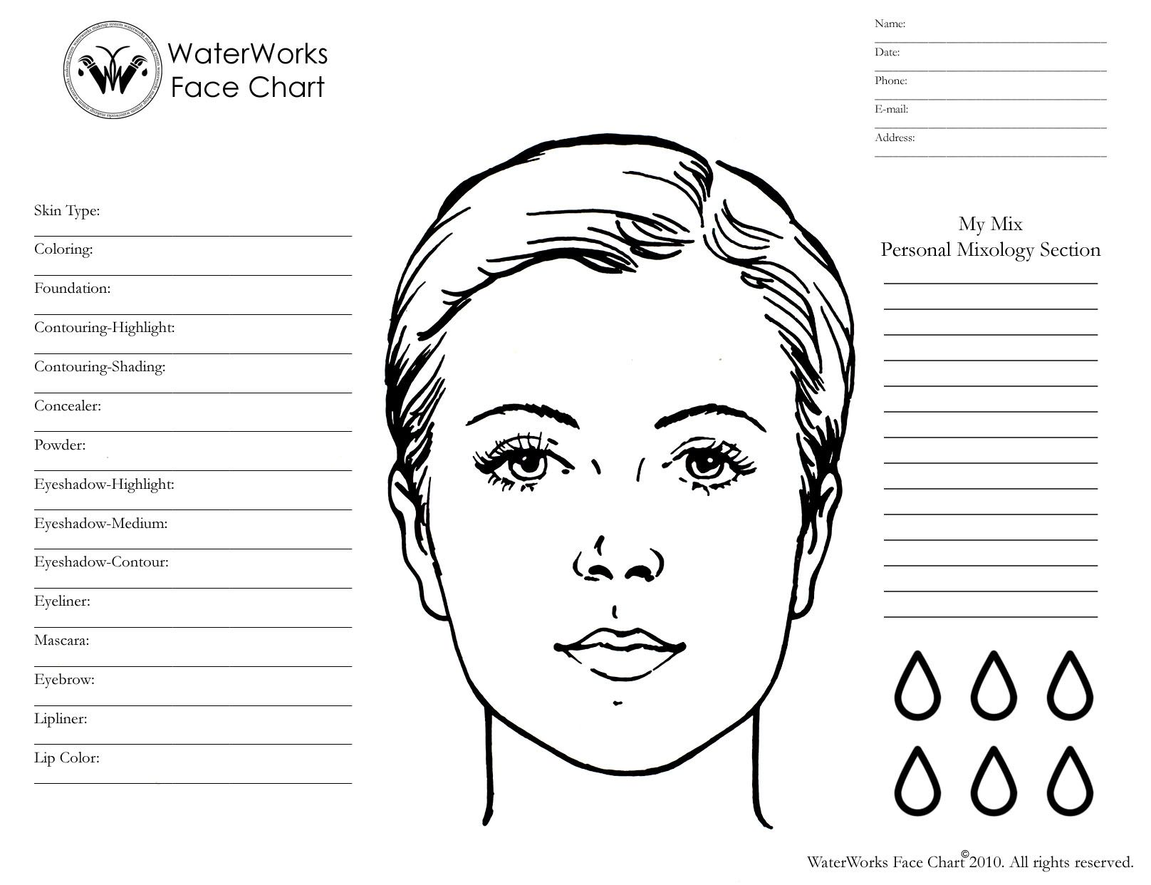 blank makeup face chart download mac wallpaper download