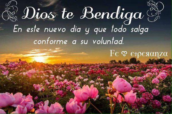 Loren Castillo On Saludos Good Morning Quotes Good Afternoon Y