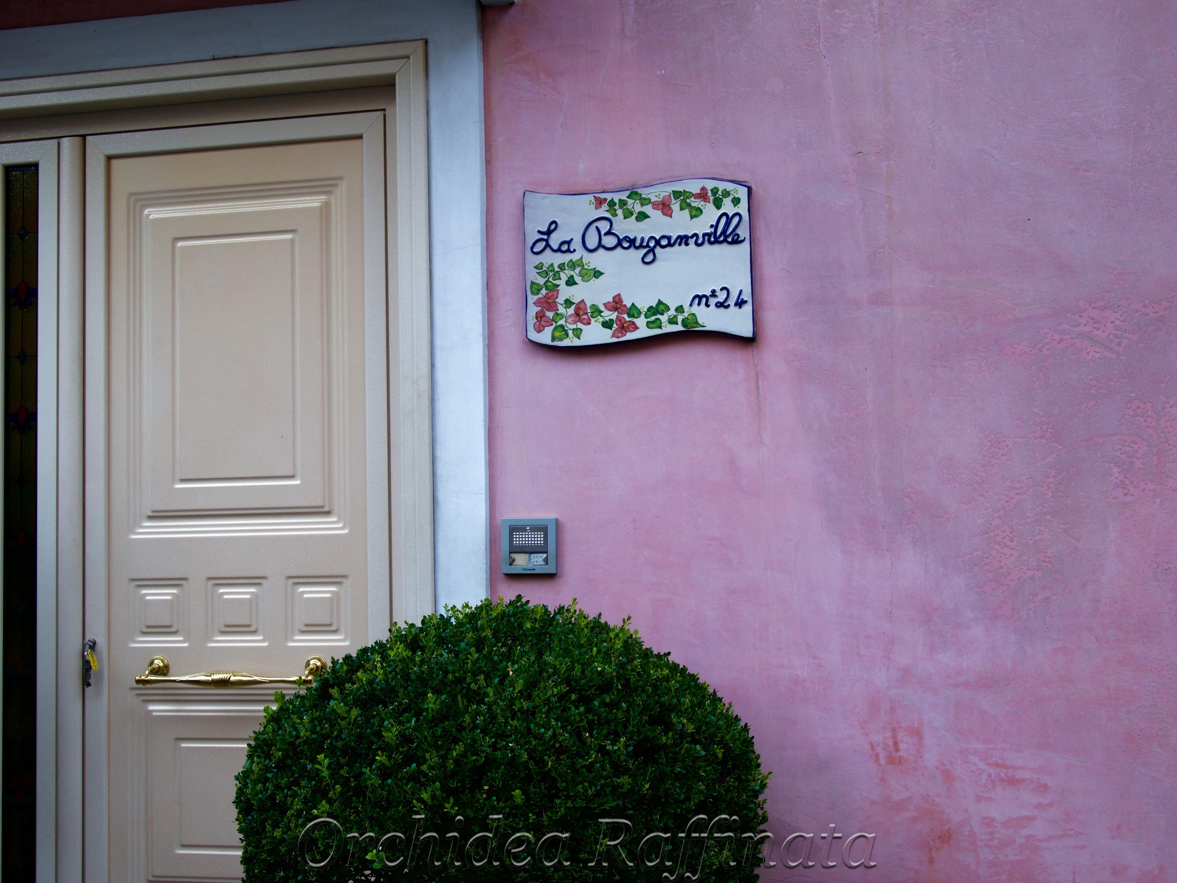 Door of Life....