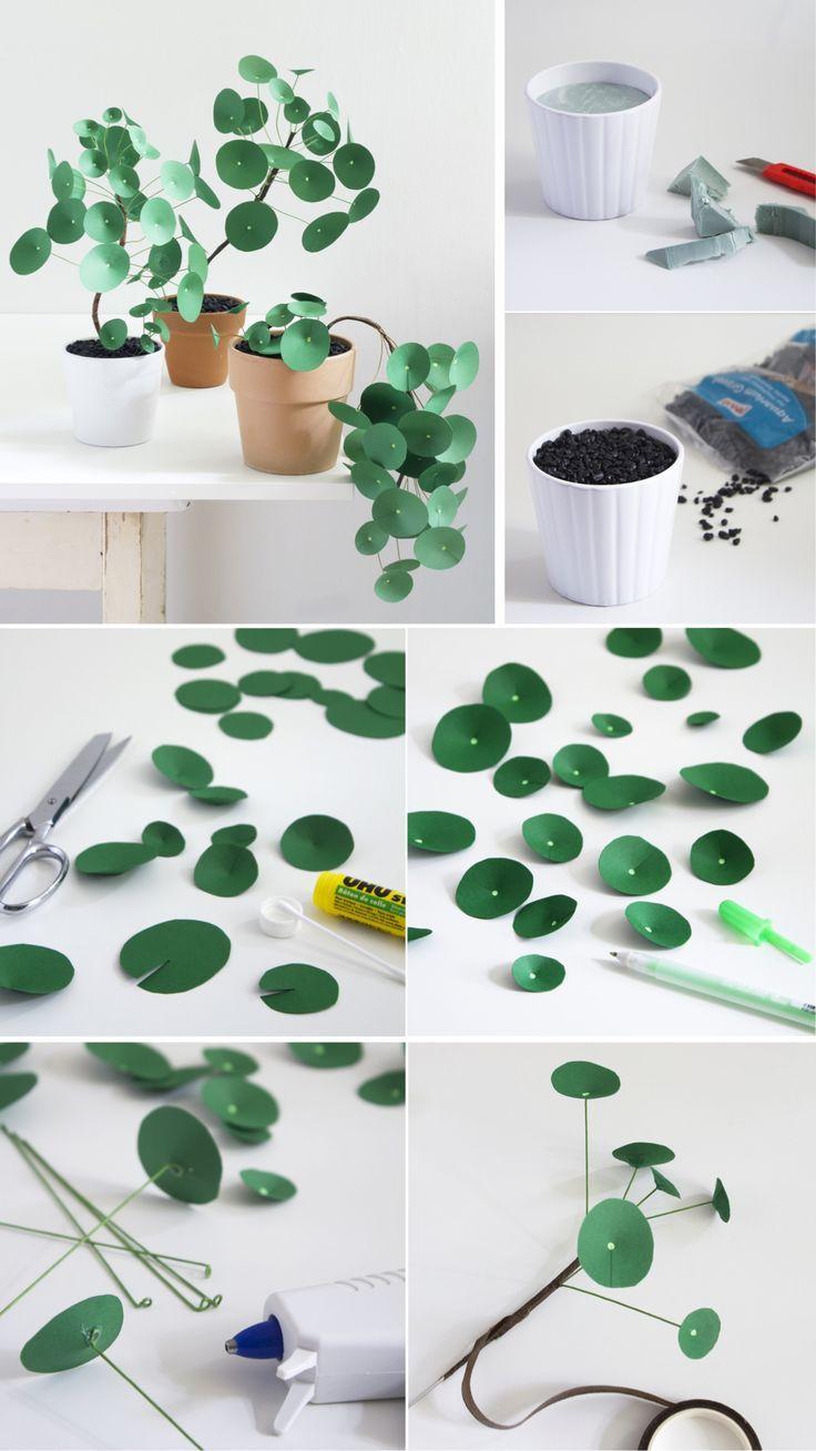 Photo of Plante Verte DIY Facile pour Enfants et Adultes