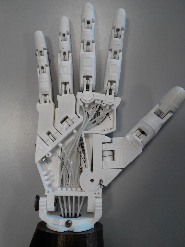 Parloma Hand V1 0 Beta 2 By Parloma Roboter Und Lasercutter